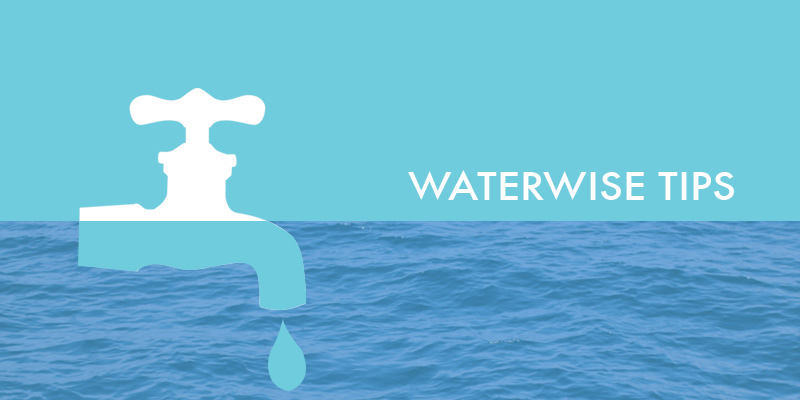Water Wise Tips